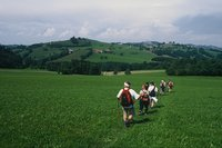 Mariazell04 Landschaft2