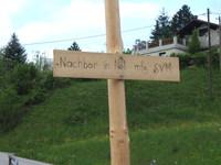 Maibaumstreich 2005