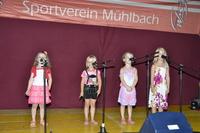 Morl 2015 - Lauf + Schlagerparade 399
