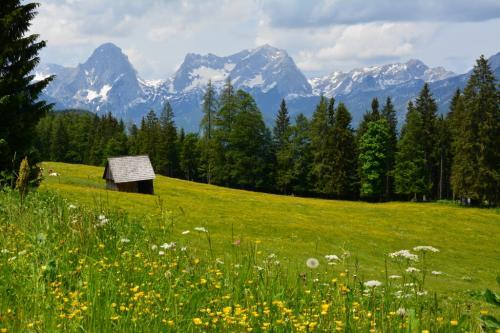 Frühjahrswanderung Steyrsbergreith 2018